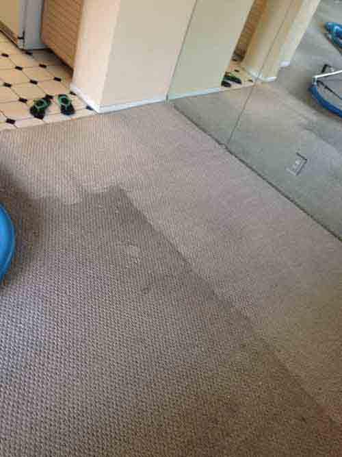 Carpet Cleaning Stanton Services Dr Carpet Costa Mesa