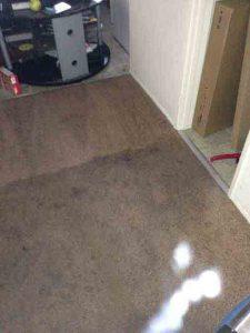 carpet cleaning laguna niguel ca